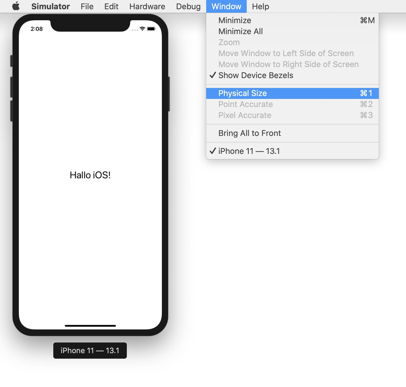 Bildschirmgröße iPhone-Simulator